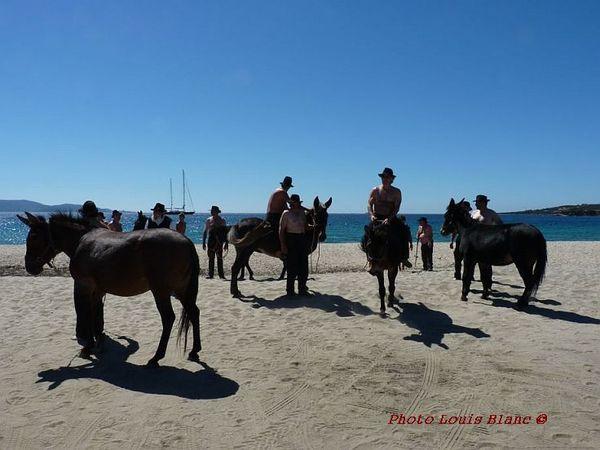 11-sept--10--les-mules.JPG