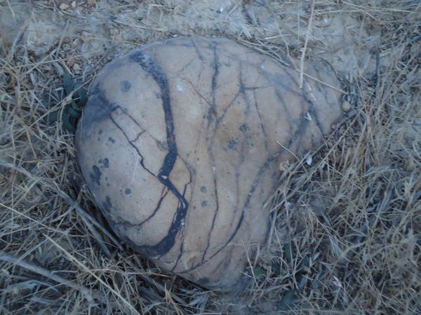 Une-roche.N-6087.JPG