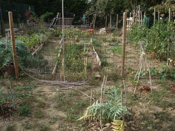 jardin entier