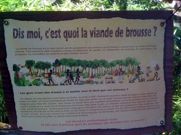 Zoo Amneville 46