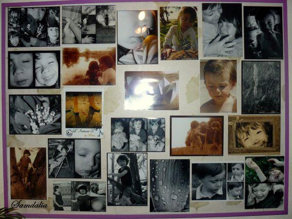 1-photo-picasa-2345.jpg