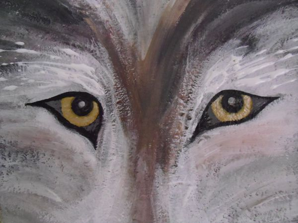 Yellow-Eyes-detail-1.JPG
