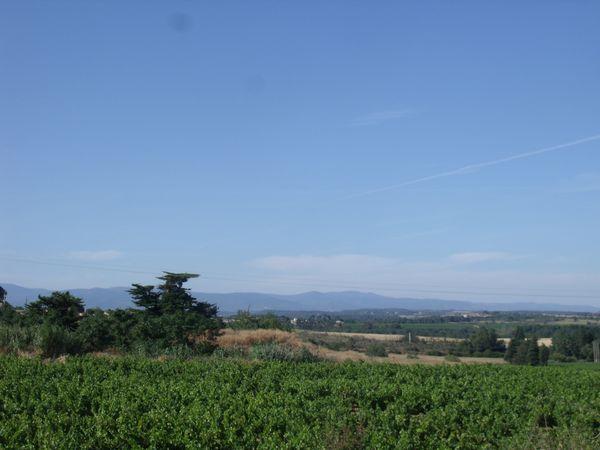 Photos week end à Carcassonne Idris-Arnaud-Cléme-copie-35