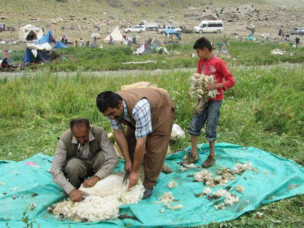 2011 07 08 Turquie 282 (Large)