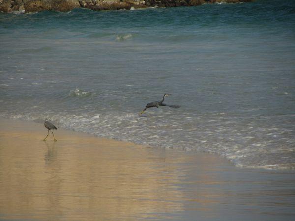 2012-10-Oman 3225
