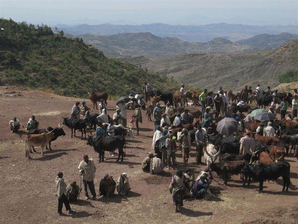 2009 12 26 Ethiopie 197 (Large)
