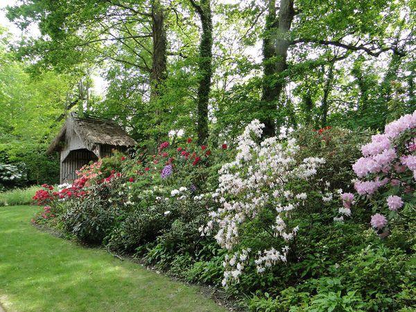 17 cabane fleurie