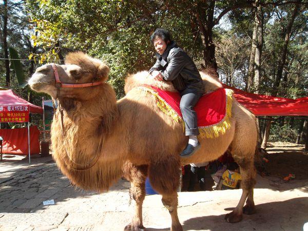 Kunming, golden temple 4