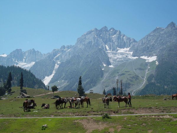 Route Srinagar-Lamayuru 1