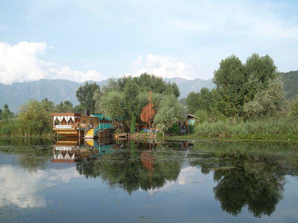 Srinagar lac Dal 2