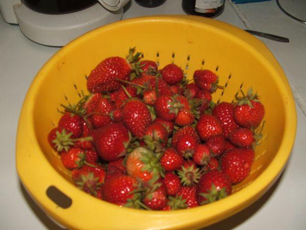 fraises 3963