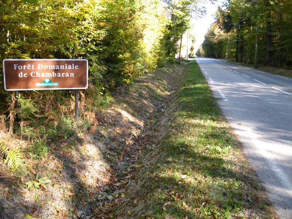 le col de la madeleine 28 octobre 2010 045