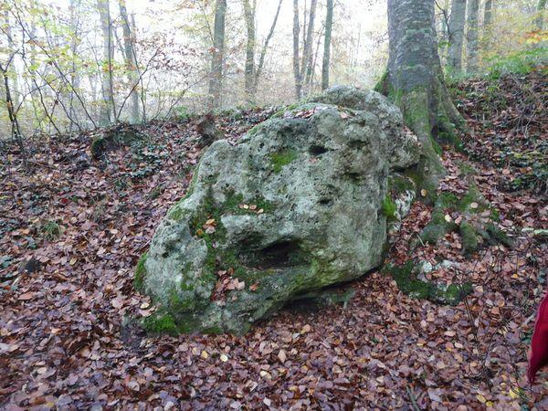 pierre bise02