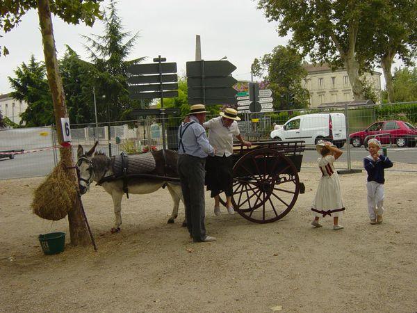 voiture-a-cheval--2.jpg