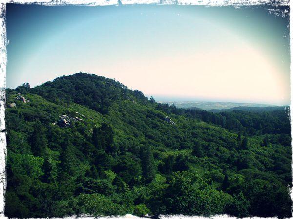 Paysage-depuis-le-chateau-da-Pena---Sintra.jpg