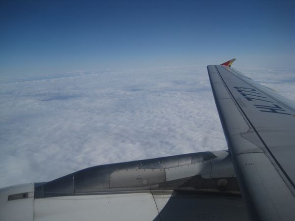 Asiana-Airlines 0177