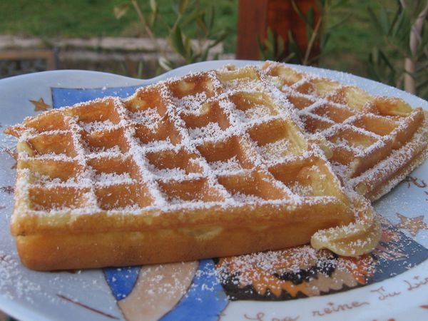 Pate a gaufre thermomix