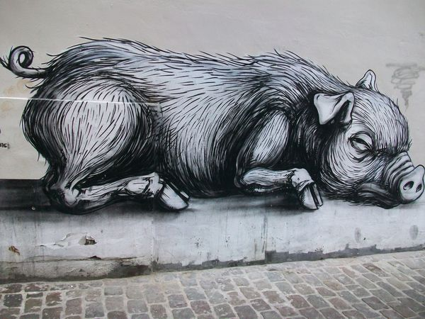 Roa-Street-Art-Bruxelles.JPG