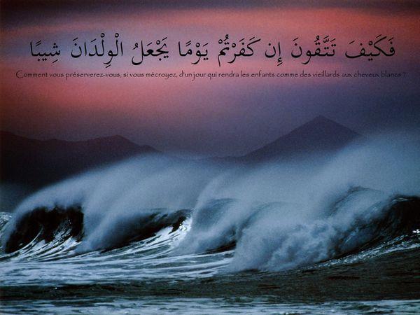 fond islam (23)
