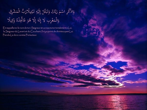 fond islam (4)