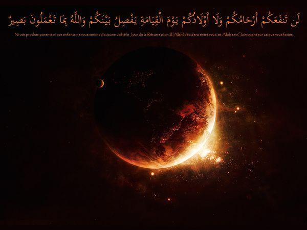 fond islam (8)