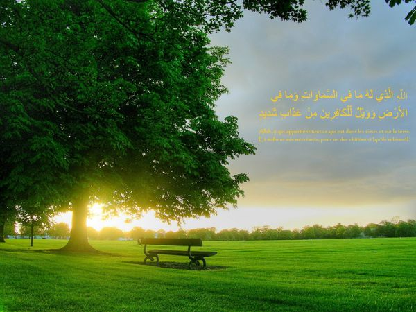 fond islam (31)