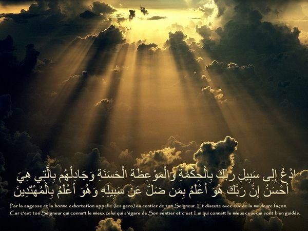 Fond écran islam coran (188)