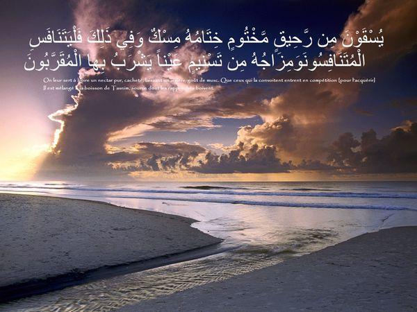 Fond écran islam coran (88)