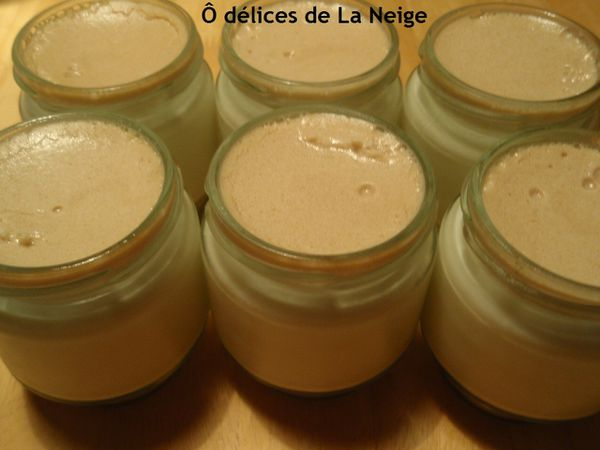 yaourt speculoos