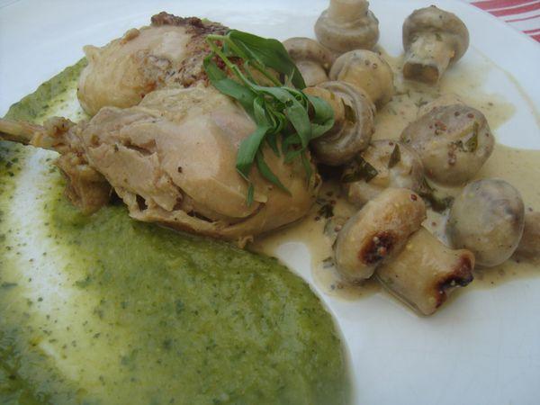 0000 poulet estragon pippa (19)