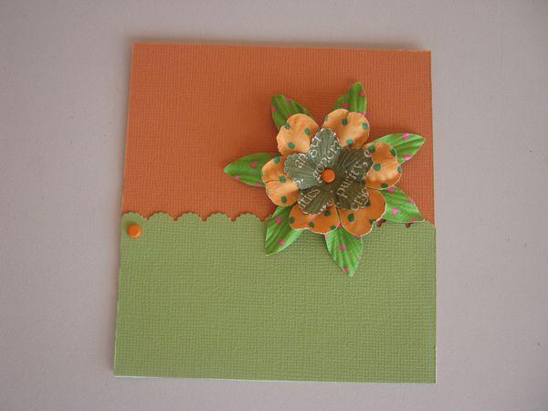 orange-et-vert.JPG