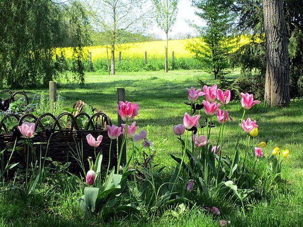 printemps9.jpg