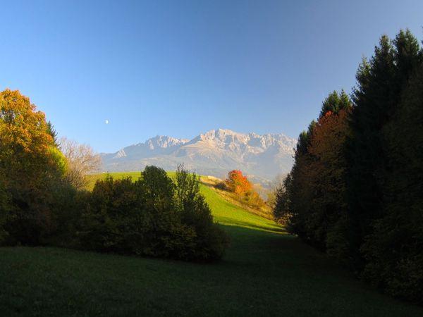 2012-10-1161.jpg