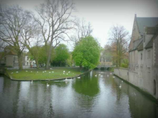 quartier du beguinage bruges-004