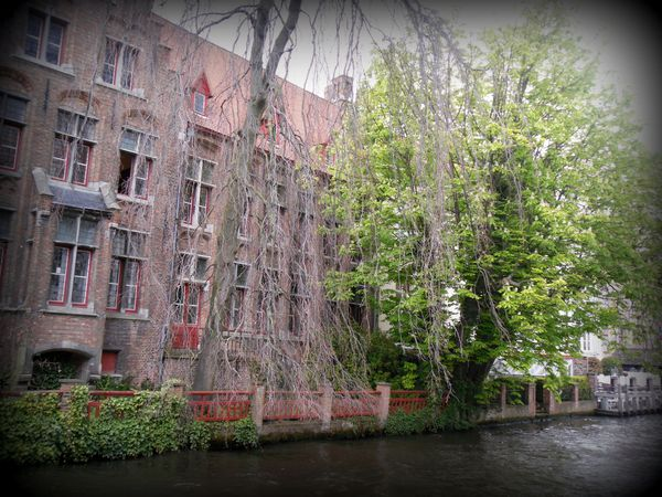 quartier du beguinage bruges-013