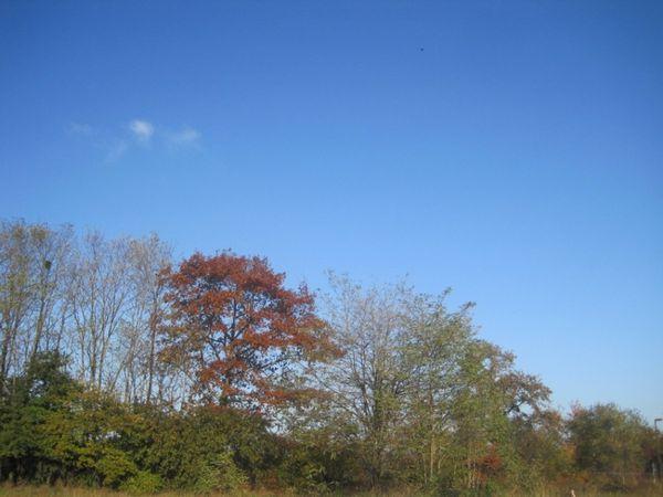 ciel-25-novembre.jpg