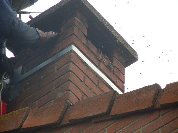Colonie dans une chemin e des abeilles dans mon jardin - Comment se debarrasser des abeilles dans une cheminee ...