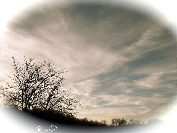 ciel pâle k