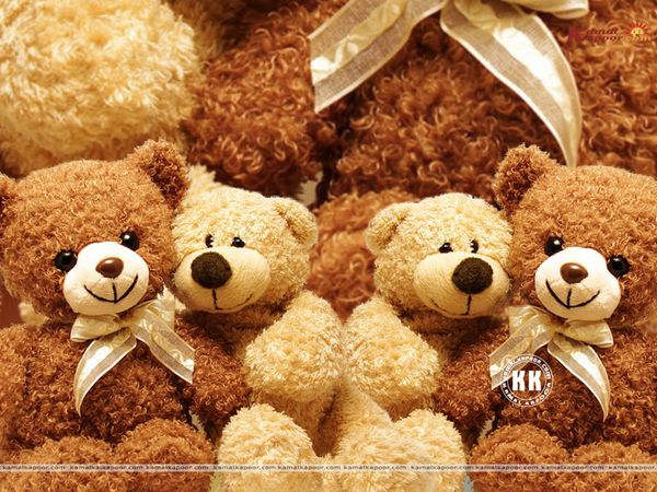 mdg-teddy-bear--29-.jpg