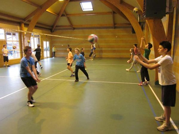 Volley-Ball 5204