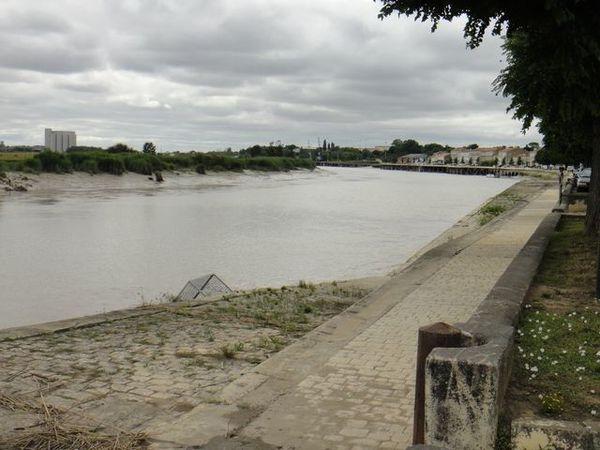 DSC03443 Tonnay Charente