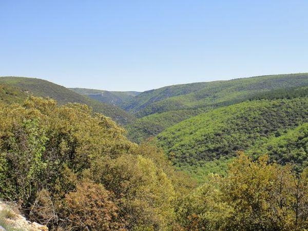 DSC03173 Les Gorges de la Nesque