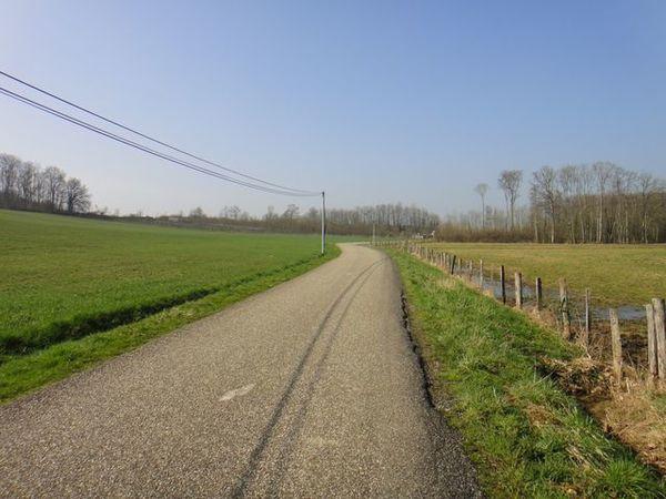 DSC04306 En Bresse