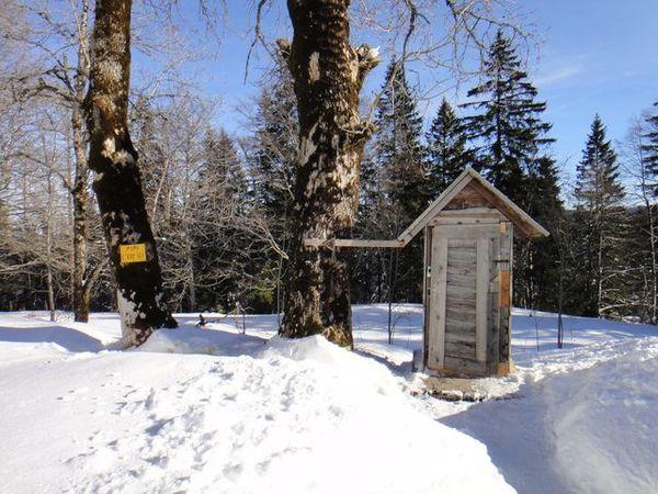 DSC04055 Toilettes