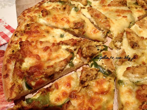 pizza blache indienne 038