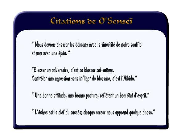 citation o sensei