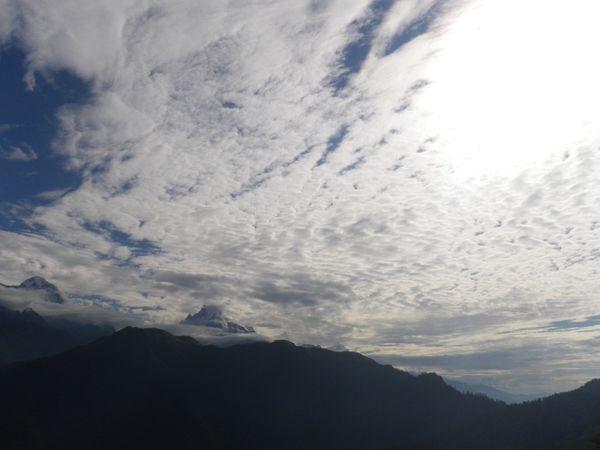 00467---NEPAL---ANNAPURNA-ROUND-TREK--8-.JPG