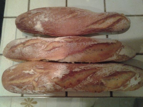 Baguettes-Coco.jpg
