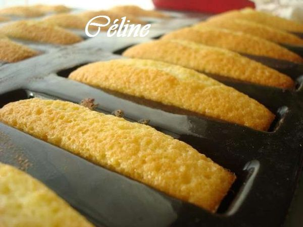 Madeleines-allongees-Celine_PhotoRedukto.jpg