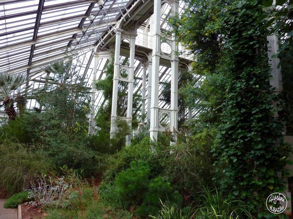 TEMPERATE-HOUSE-KEW-GARDENS-14--1600x1200-.jpg